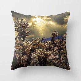 Cholla Cactus Garden bathed in Sunlight in Joshua Tree National Park California Throw Pillow