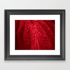 red passion I Framed Art Print