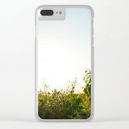 Field Brush Clear iPhone Case