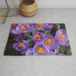 Bunch of Crocus Rug