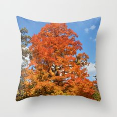 Red, Orange, Yellow Tree Color Photography Throw Pillow