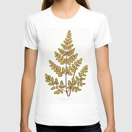Edward Joseph Lowe - Cheilanthes Pteroides T-shirt