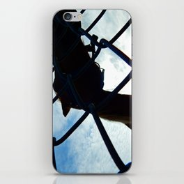 Horse at the Fence iPhone Skin