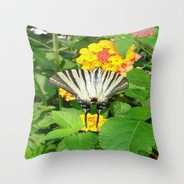 Scarce Swallowtail Feeding on Lantana Throw Pillow
