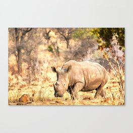Powerful Rhino Canvas Print