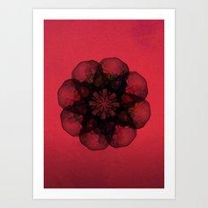 Lilium 'Cameo' Art Print