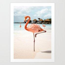 Pink Flamingo Art Print | Aruba Island, Caribbean Photo | Tropical Summer Holiday Travel Photography Art Print