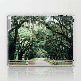 Southern Live Oak Laptop & iPad Skin