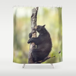 Young Black Bear On A Tree Shower Curtain