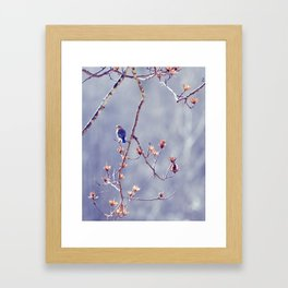 A Bluebird for Isabelle Framed Art Print