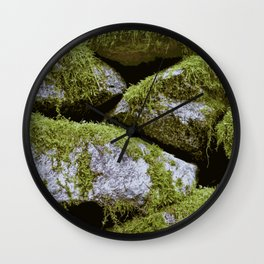 Moss, Rocks, Moss Wall Clock