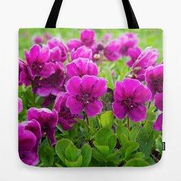 Beauty purple flowers Rhododendron camtschaticum Tote Bag