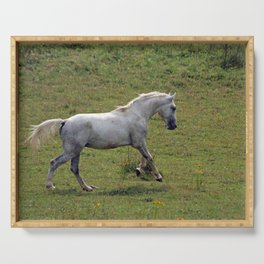 White horse Serving Tray