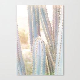 Ethereal Cacti III Canvas Print