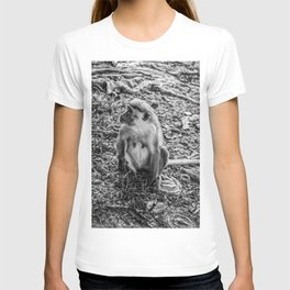 Toque Macaque Monkey T-shirt