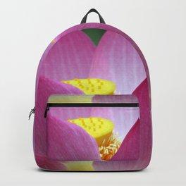 Peek-a-boo Beauty Backpack