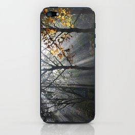 Autumn Sunbeams iPhone Skin