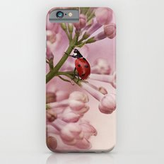 Ladybird on Lilacs iPhone 6s Slim Case
