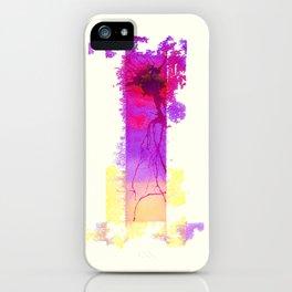 Fractula iPhone Case