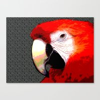 parrot Canvas Prints featuring Parrot by Whimsy Notions Designs