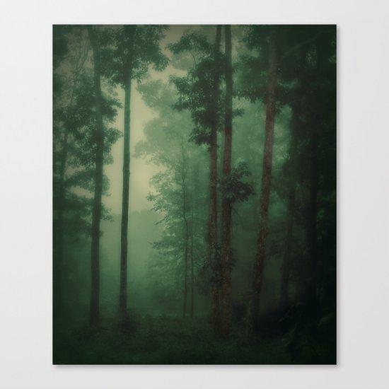 Fog's footsteps Canvas Print