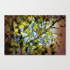Bird in a tree Canvas Print