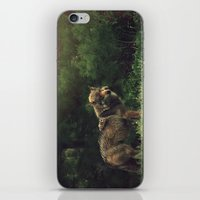 bad wolf iPhone & iPod Skins featuring Bad Wolf by Monster Brand