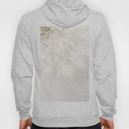 Sparkling dandelion seed head with droplet Hoody