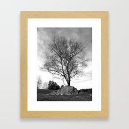 Adaptation Framed Art Print