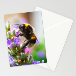 Humble Bumblebee Stationery Cards