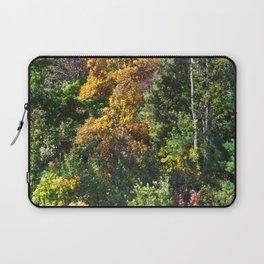 Fall Foliage 002 Laptop Sleeve