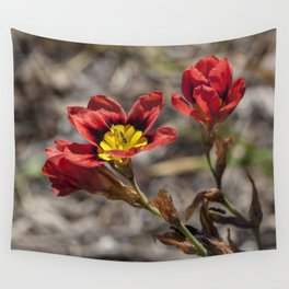 Sparaxis Wall Tapestry