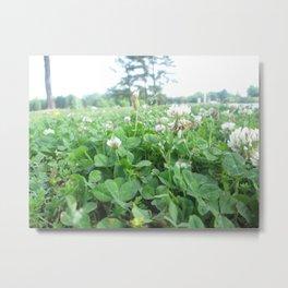 More Wildflowers & Grass Metal Print