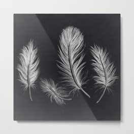 Chalk feather collection Metal Print