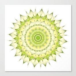Delicate Mandala green on white Canvas Print