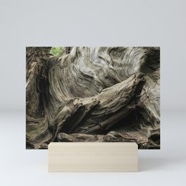 Etched by Nature Scarred by Man Mini Art Print