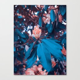 Magical Alien Planet Flora Fauna Neon Turquoise And Pink Canvas Print