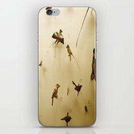 Birds of Glory iPhone Skin