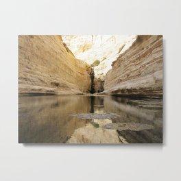 Desert Views of a natural spring Metal Print