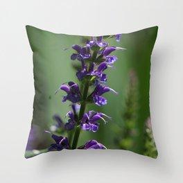 Purple Salvia Throw Pillow