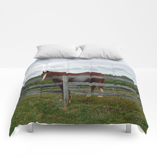 Horse Time Comforters