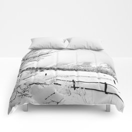 Dusted Flatirons Comforters