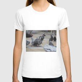 Columbidae T-shirt