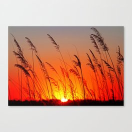 When the day starts Canvas Print