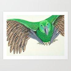 Kakapo in flight Art Print