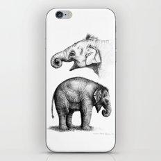 Baby Elephant study G2011-008c iPhone & iPod Skin