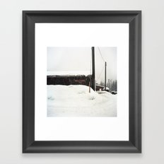 Salmo Framed Art Print