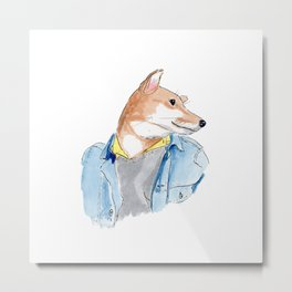 stylish Shibainu dog in jeans jacket Metal Print