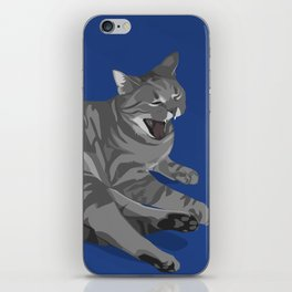 Apathy Killed the Cat iPhone Skin