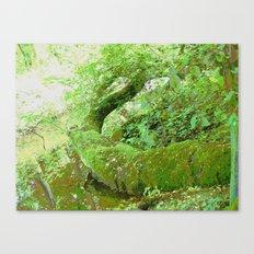 The Tree Snake! Canvas Print